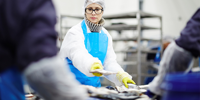 Four challenges of the fish industry