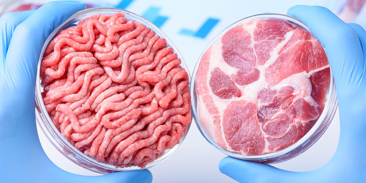 Künstliches Fleisch: Kommt jetzt die Protein-Revolution?